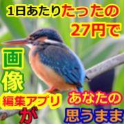 1日あたり27円